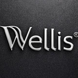 logo_wellis_schwarz_wellness_swimspas